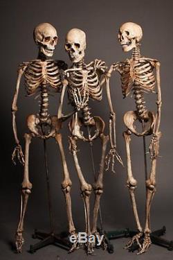 3 CRIME SCENE SKELETONS The Walking Dead Haunted Halloween Prop & Decoration