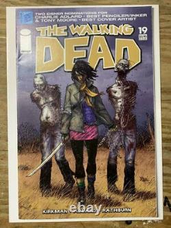 The Walking Dead #19/Image Comic Book/1st Michonne/FN